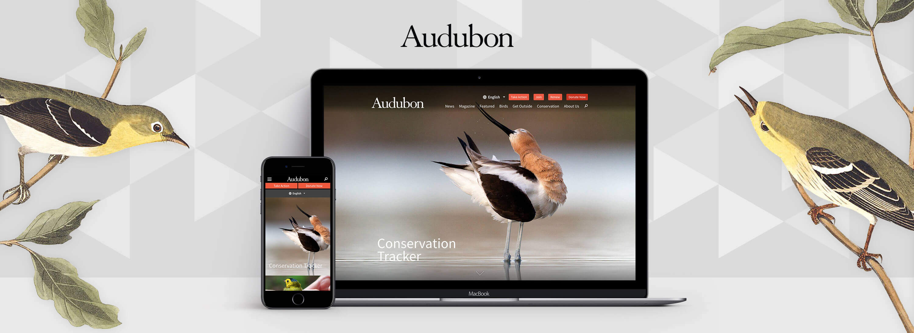Header of Audubon Society & Drupal blog