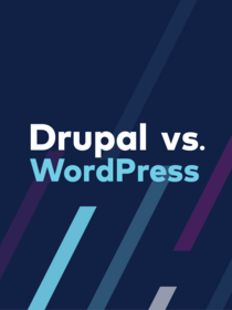 Teaser for Drupal vs Wordpress ebook